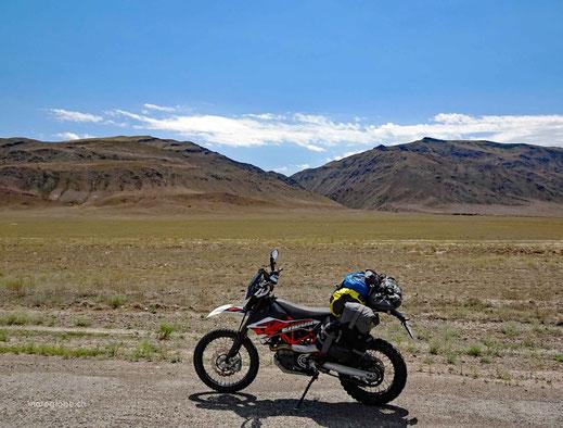 Die Steppe und Wüste ist wieder da
