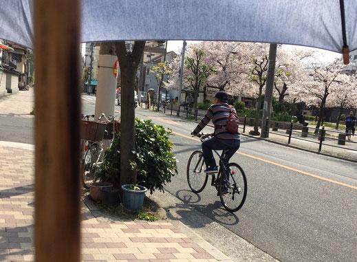 追い抜く自転車も自然と距離をとってくれます