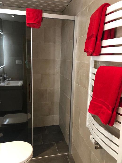 WC / Bad Ferienwohnung Alpfrieden in Grächen