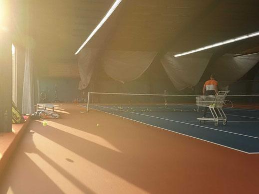 AV Syntec Europa,Rebound Ace,Tennisplatz,Spielfeld,Bodensysteme,Hallenplatz,Renovierung,PMTR,Tennisakademie,Tennisschule,Tennis Kinder, Tennis Übungen Kinder, Tennisspielen, Tennislernen, Spielerentwicklung, Trainingsstufen,Tennistraining,Kindertennis,Ten