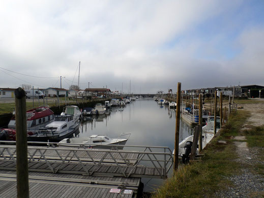 Le port ostréicole