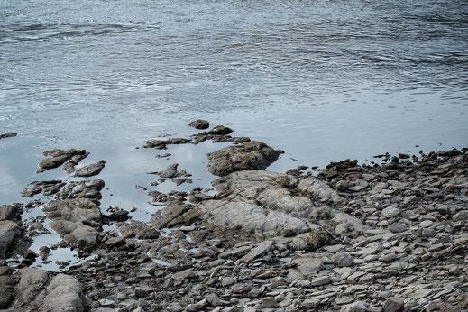 Graubraune Steine ragen in den Fluss - Rhein-Fotos kostenlos und lizensfrei downloaden bei mjpics.de
