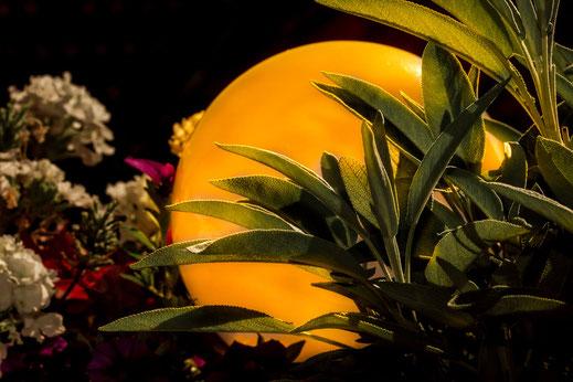 Beleuchtete Balkonpflanzen