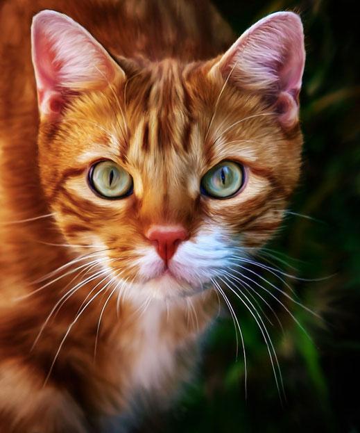 Rot gestromte Katze - Portrait Smudge Painting