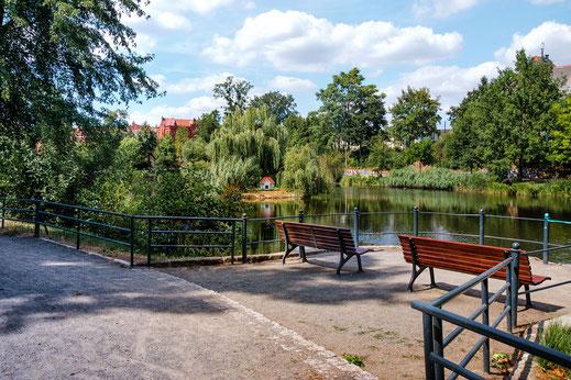 Ruhebänke am Schwanensee im Stadtpark in der Lutherstadt Wittenberg