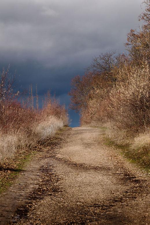 Feld-Wanderweg im Herbst. Dunkle Wolken kündigen Regen an