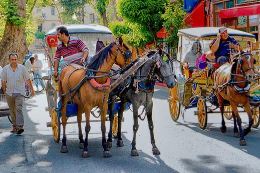 Pferdekutschen auf der Prinzeninsel Büyükada-Istanbul