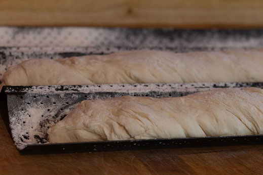 Baguette-Teiglinge auf dem Baguetteblech vor dem Einschub in den Ofen