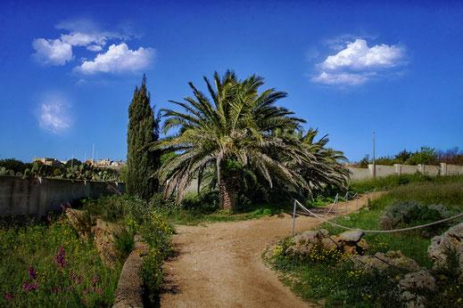 Kleiner Park mit Bäumen und Palme in einer Tempelanlage auf Gozo