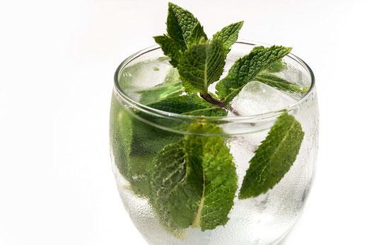 Frische Minze in Wasserglas