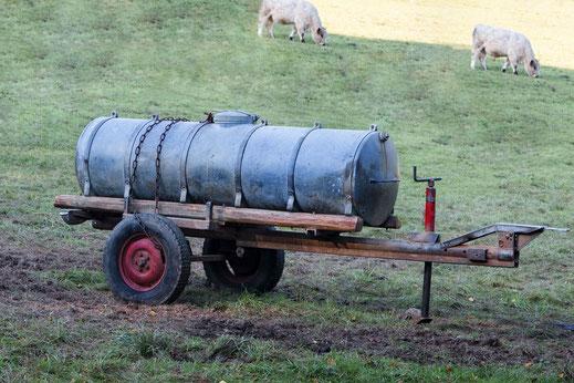 Milch-oder Tankwagen steht auf der Weide. Im Hinterrund sind helle Kühe zu sehen
