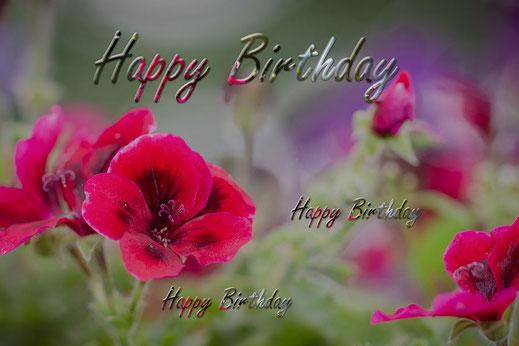 Happy Birthday-Geburtstag-Grusskarte Rote Pelargonien