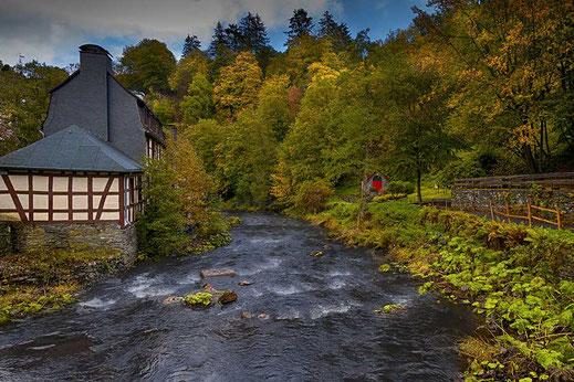 Natur in Monschau an der Rur © Jutta M. Jenning ♦ mjpics.de
