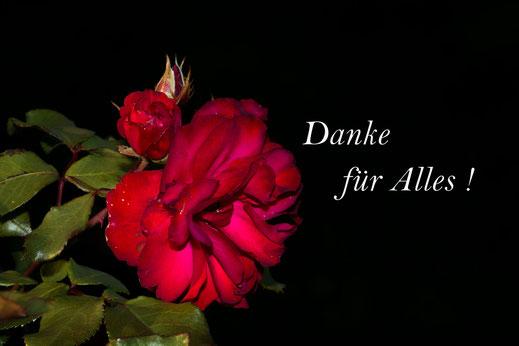 """Grußkarte-""""Danke für Alles"""" mit roter aufgeblühter Rose mit Blättern und Knospe. Der Hintergrund ist schwarz"""