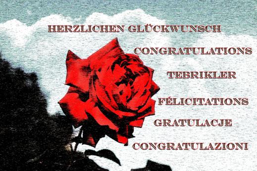 aufgebluehte-freilandrose-rot-art-abstrakt-glueckwunsch-rose-spruch-grusskarte