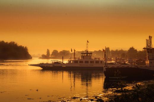 Rheinfähre im goldenen Abendlicht