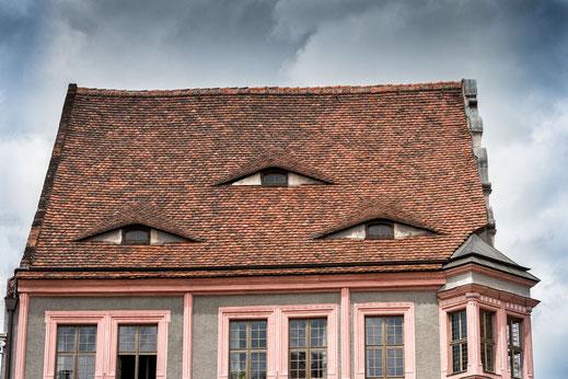 Hausdach-mit-Augen