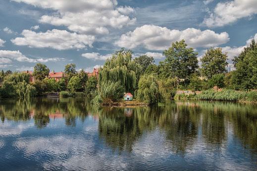 Schwanensee im Stadtpark in der Lutherstadt Wittenberg