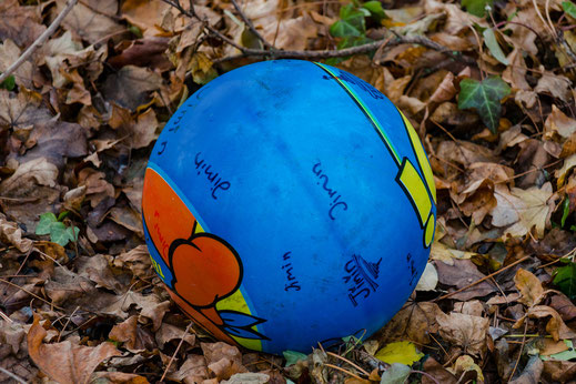 Bunter Kinder-Spielball liegt auf braunem Herbstlaub