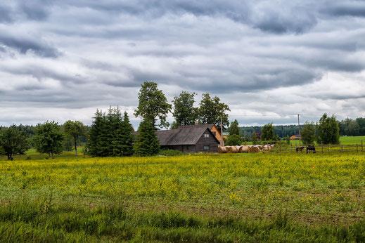 Auf dem Land in Polen-Masuren © Jutta M. Jenning