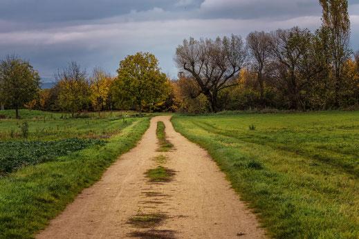 wandern-im-herbst-landschaft