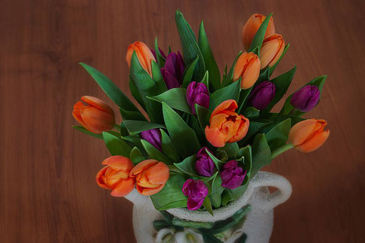 Tulpenstrauß lila-orange in Bauernvase © Jutta M. Jenning ♦ mjpics.de