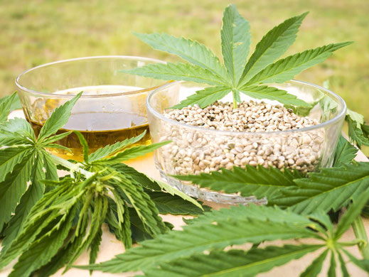 Schmeichelt Geschmacksnerven und der Gesundheit: Hanföl zum Einnehmen von darumBio!