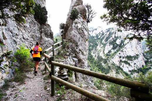 Trail Quillan