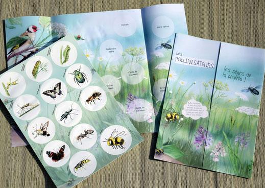poster pédagogique, pollinisateur, pollinisation, abeille, stickers, outils, malette, jeux, enfants, nature