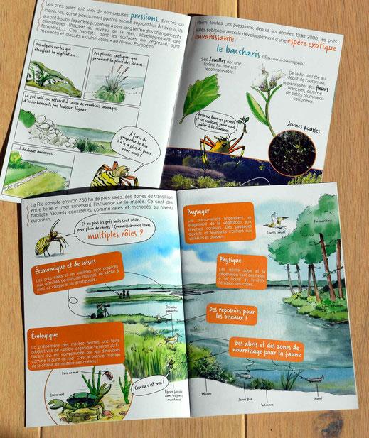 livret pédagogique, sensibilisation, nature, biodiversité, écologie, jeux, sauvegarde