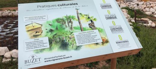 panneau pédagogique, sentier de découverte, interprétation, nature, biodiversité