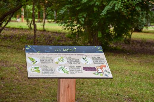 panneau pédagogique, panneaux d'interprétation, arbres, forêt, illustration, didactique, médiation, pédagogie, nature, biodiversité