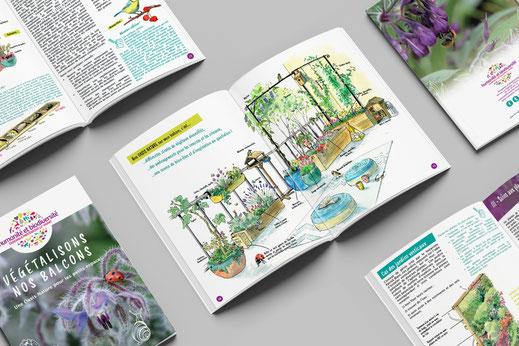 nature en ville, livret pédagogique, rédaction de contenu pédagogique, illustration