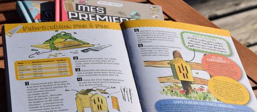 illustration, édition, nature, livret, atlas, carnets, guides, hôtel à insectes
