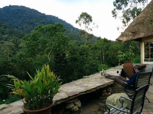gorilla_trekking_bwindi_national_park.jpg