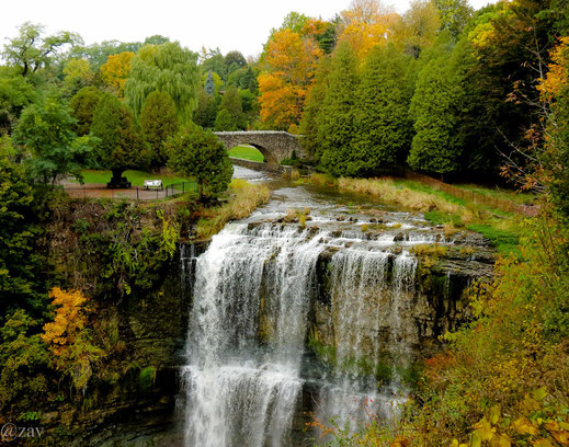 Andy Zav - Websters's Falls photo