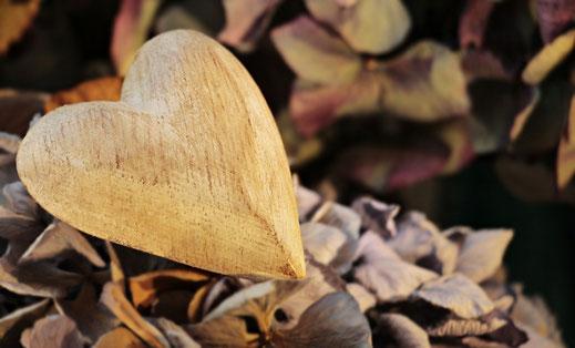 5 ans de Mariage : Célébrer les Noces de Bois
