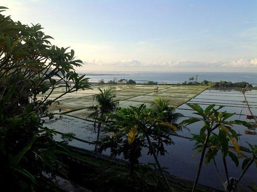 Rumah di jual di Medewi. Rumah dijual di Bali barat