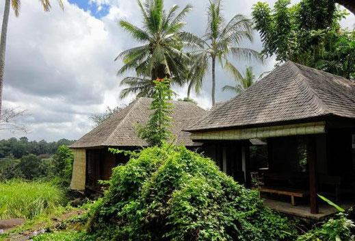 Di jual resor di Ubud. Dijual properti di Ubud