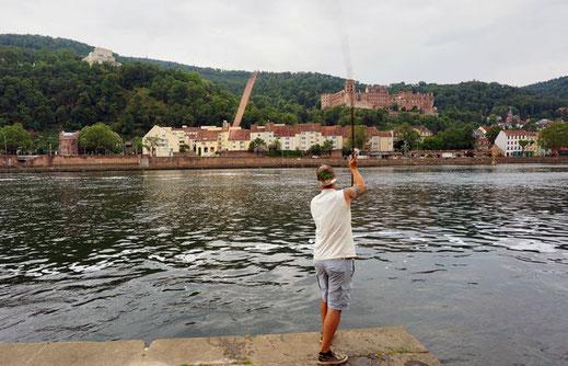 Angler wirft Blinker weit über das Ziel hinaus!  Mehrere Einschläge eines großen Blinker, ein sogenannter Spinköder zum aktiven angeln auf Wels, wurden am Samstagnachmittag im Garten des Heidelberger Schlosses verzeichnet. Der Übeltäter war schnell gefund