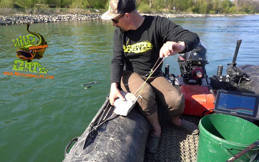 Wir befischten zum größten Teil die Buhnenfelder des Hauptstromes und präsentierten unsere Dead Punch Forellen und Tauwurm Calamari Bündel an der Strömungskante kurz nach und kurz vor den Buhnenköpfen.  Wild Grüße Peter Merkel und Patrick Haas.