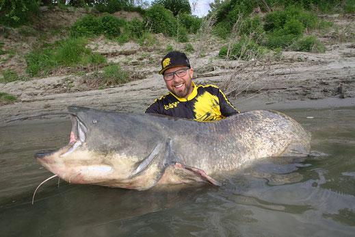 Wir liesen uns den italienischen Po hinab treiben. Jeden Tag befischten wir mit unseren Gästen einen anderen Bereich des großen Flusses.