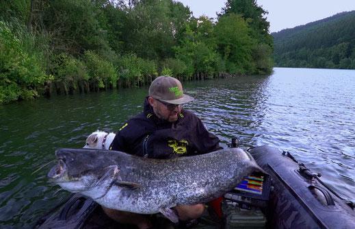 Der Befischungsdruck der letzten Jahre hat den Wels auch am Neckar vorsichtiger gemacht.