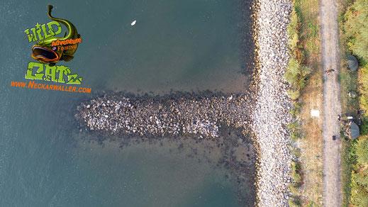 Angelt man am Rhein oder an anderen schnell Fließenden Gewässern halten normale Bleigewichte die Montage nicht am Gewässergrund, deswegen benutze ich Steine als Gewichte.
