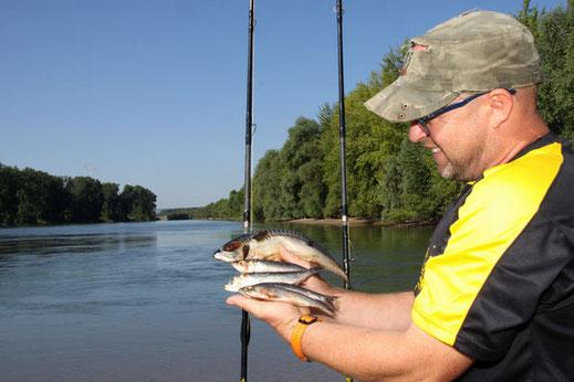 Peter Merkel fischt in Deutschland am liebsten mit totem Köderfisch.