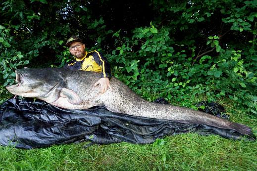 Erolgreich in Deutschland auf Wels angeln.