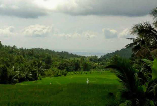 Land for sale by owner, Northi Lombok