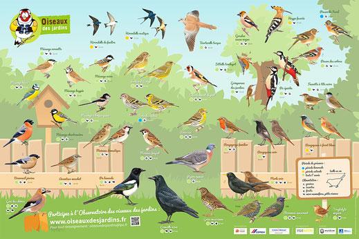 LPO Oiseaux du jardin