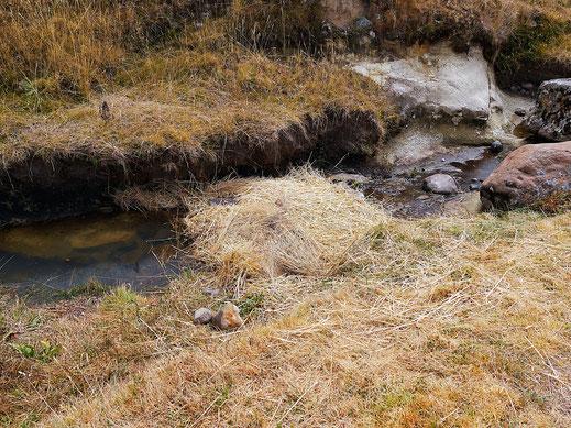 Das Stroh-Wasserbett, bei Uchkus Incañan, Peru (Foto Jörg Schwarz)