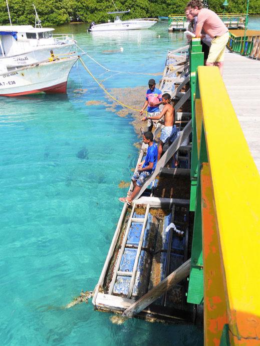 Spurenwechsler slow travel Reiseblog Reisebericht Reisereportage Kultur Reise Urlaub Weltenbummler outdoor Karibik Kolumbien Traveller